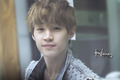 ♦ Henry Lau ♦ - henry-lau-of-suju-m photo