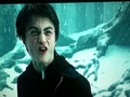 **SNIPPY POTTER!!** - harry-potter photo