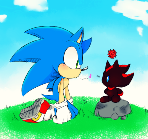 Sonic the Hedgehog wallpaper with anime titled :.: Sonic & Shadow Chao ^.^ :.: