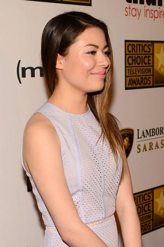 3rd Annual Critics' Choice 电视 Awards 2013