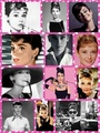 Audrey H. Collage - audrey-hepburn photo