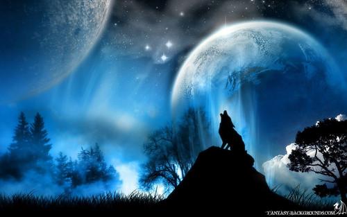 Beautiful 狼, オオカミ