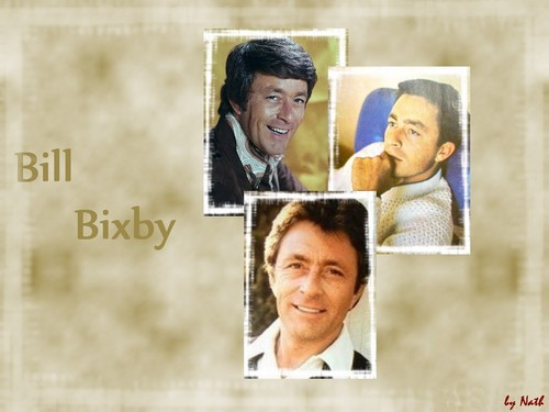 bill bixby wallpaper probably containing a portrait titled Bill Bixby