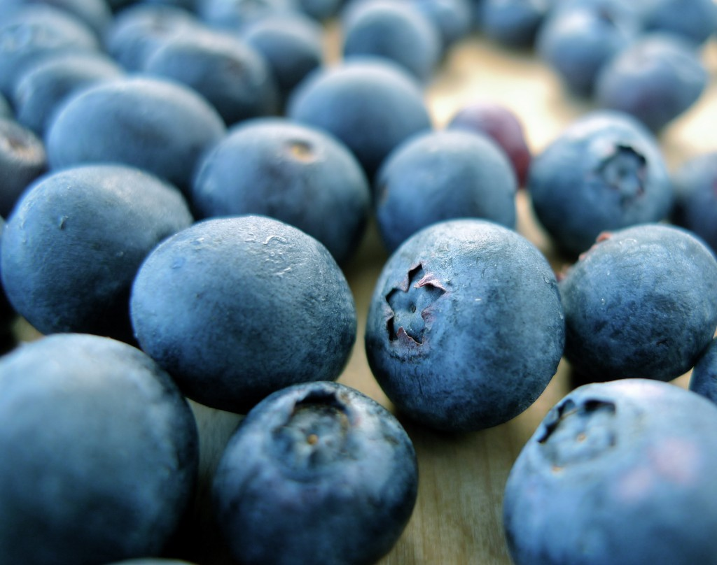 Blueberry - Fruit Photo (34733309) - Fanpop