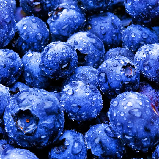 Blueberry - Fruit Photo (34733315) - Fanpop