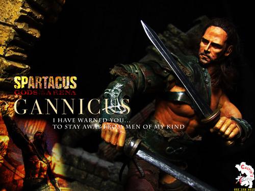 Custom one sixth Gannicus