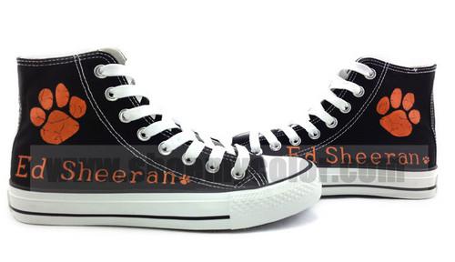 Ed Sheeran custom canvas shoes