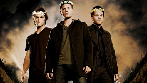 bunga crowns