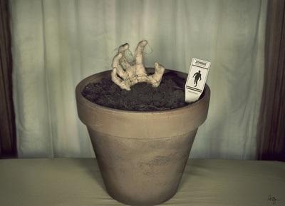 Grow a Zombie