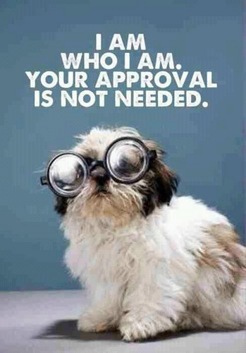 I am who I am- your approval isn´t needed