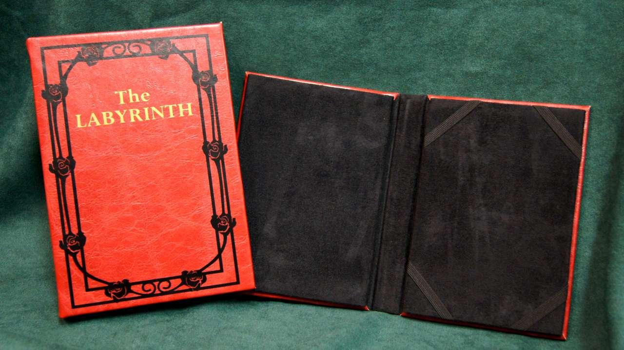 Labyrinth Kindle / iPad Cover