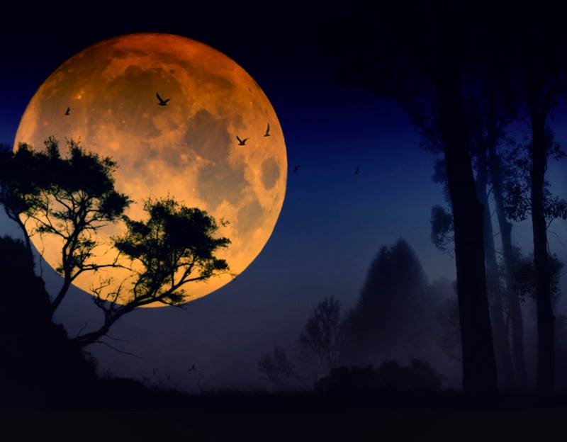 pretty moon wallpapers - photo #7