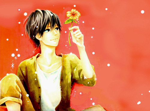 Orange (TAKANO Ichigo) wallpaper probably with a bouquet called Orange
