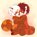 Red Panda Snuggles - furry photo