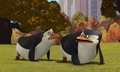 Rico and skipper:3 - penguins-of-madagascar photo