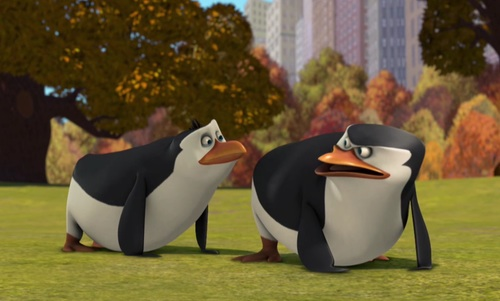 Os Pinguins de Madagascar wallpaper entitled Rico and skipper:3