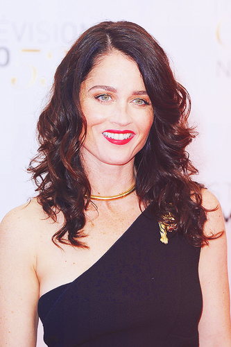 Robin Tunney wallpaper possibly with a portrait titled Robin Tunney, TV Festival 2013 in Monte Carlo