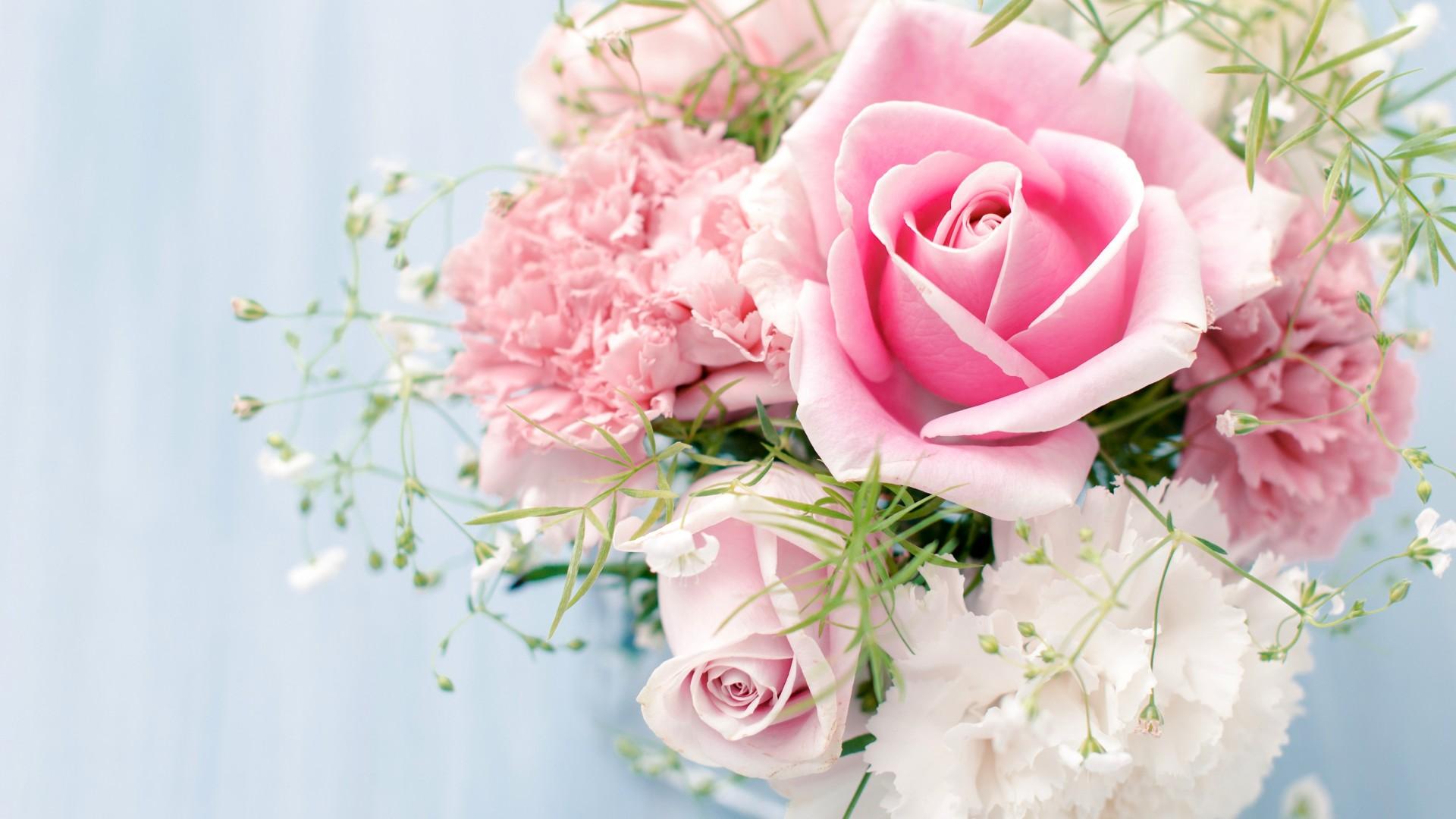 Roses - flowers Wallpaper  Roses