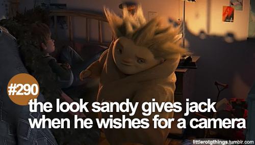 Sandy ♥
