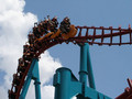 Serial Thriller - rollercoasters photo