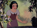 Snow White's slave look (STAR WARS EDITION) - disney-princess photo
