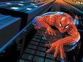 Spidrman  - spider-man photo