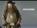Swagrid - harry-potter photo