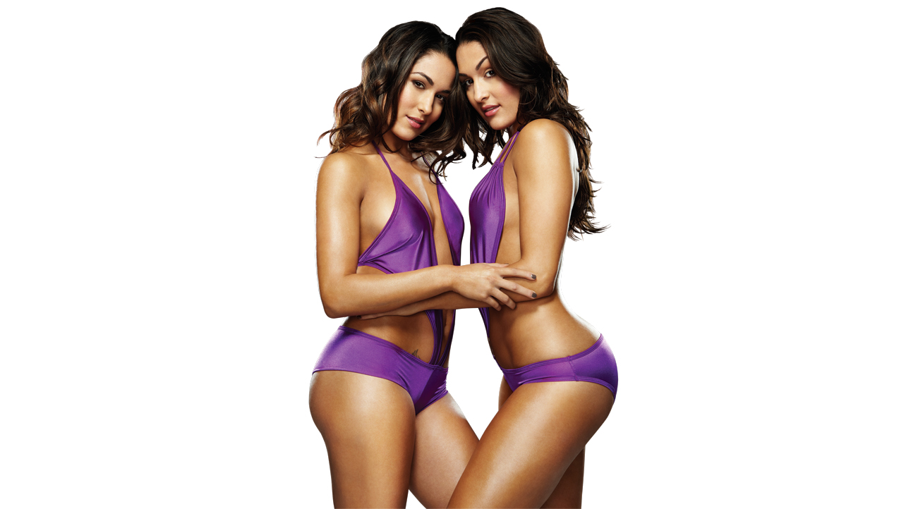 twins bella Wwe divas