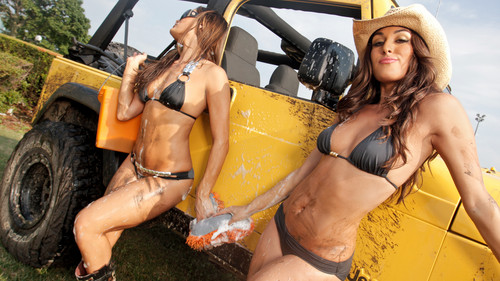 The Divas of Summer: Bella Twins