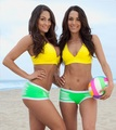 The Divas of Summer: Bella Twins - wwe-divas photo