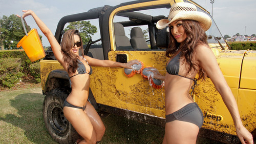 WWE Divas wallpaper containing a boater, a fedora, and a snap brim hat entitled The Divas of Summer: Bella Twins