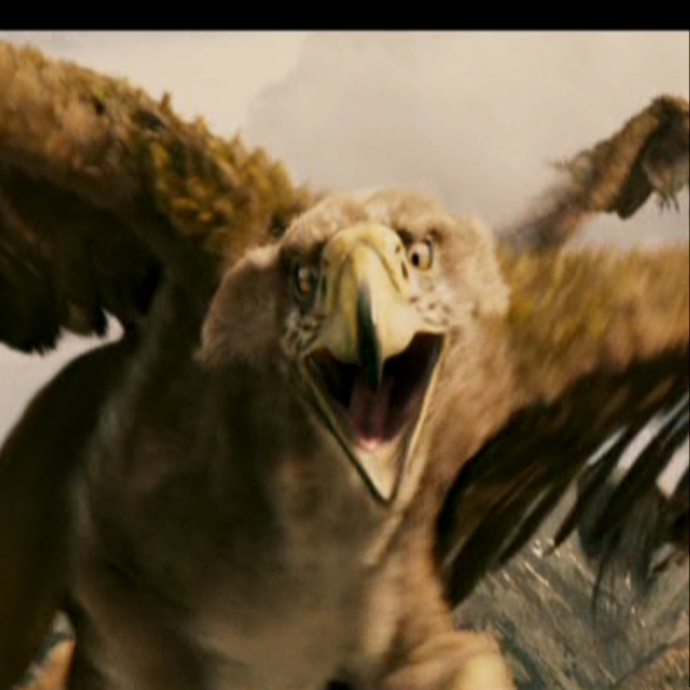 The griffin jadis turned to stone jadis queen of narnia for The griffin