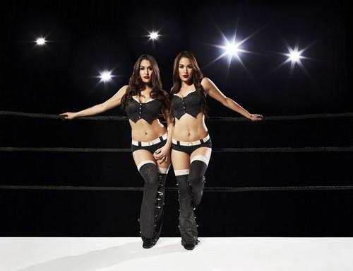 Total Divas: Bella Twins