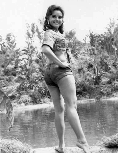 Pictures Mary Ann Off Gilligan S Island
