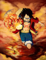 *Luffy* - monkey-d-luffy photo