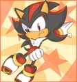 .:Skate Shadow Skate:. - shadow-the-hedgehog photo