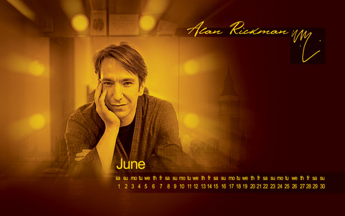 alan rickman fondo de pantalla probably with a concierto entitled Alan Rickman