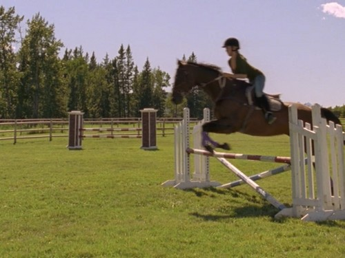 Heartland Hintergrund with a horse trail entitled Amy on Lightning Dexter