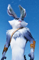 Bunnymund ♥ - bunnymund photo