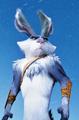 Bunnymund ♥ - bunnymund photo