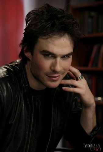 Damon Salvatore پیپر وال probably containing a portrait titled Damon Salvatore