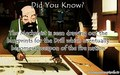 Did You Know? - avatar-the-last-airbender photo
