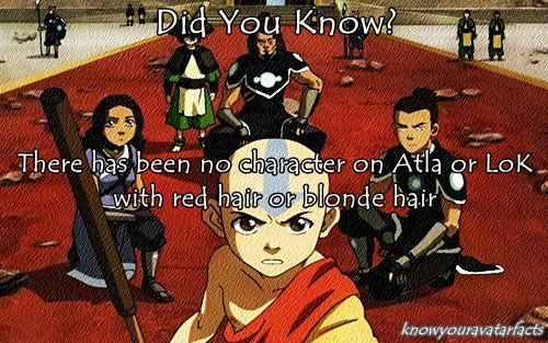 Avatar – La leggenda di Korra wallpaper with Anime titled Did te Know?