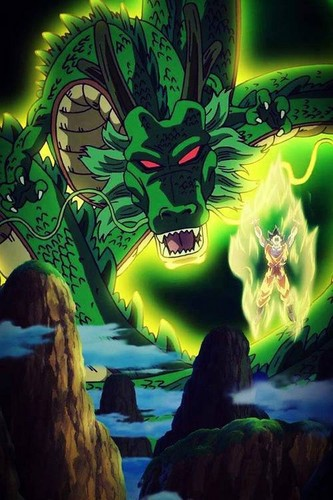 Гоку and Shenron