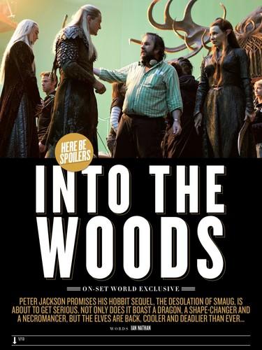 Into The Woods | Empire Portraits | Elves