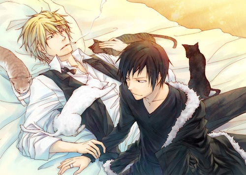 Izaya and Shizuo (Durarara!!) - Yaoi Fan Art (34826454 ...