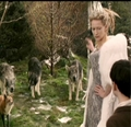 Jadis looks at Edmund as the fox called him You'r Majesty and not her.