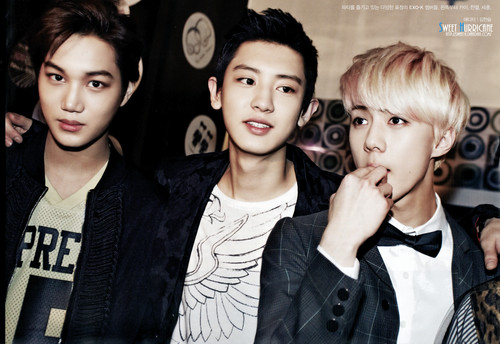 EXO-K wallpaper with a portrait called Kai, Chanyeol & Sehun