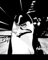 Kowalski anime - penguins-of-madagascar fan art