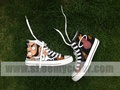 LeBron James Miami HEAT hand painted shoes - lebron-james photo